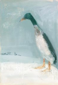 Snow Duck a limited edition print by Madeleine Floyd