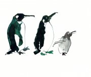 Limited edition prints and art prints by Madeleine Floyd - Penguins