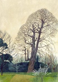 Sweet Chestnut In Saltran a limited edition print by Annie Ovenden
