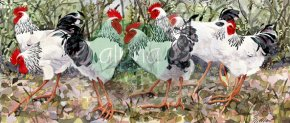Woodlanders a limited edition print by Mary Ann Rogers