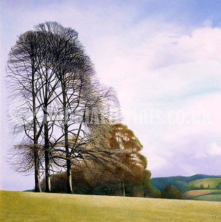 Limited edition prints by artist Annie Ovenden