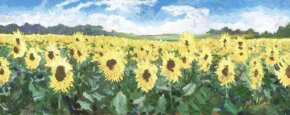 Sunflower Sanctuary a limited edition print by Timmy Mallett