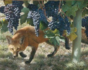 Between the Vines a limited edition print by Carl Brenders