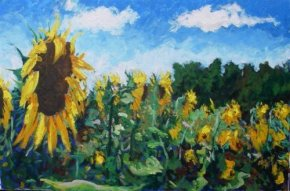 Sunflowers in France (canvas) a limited edition print by Timmy Mallett