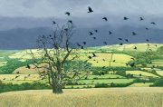 Limited edition prints and art prints by Annie Ovenden - Countryside Alarm
