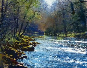 The Dart near Holne Bridge a limited edition print by Richard Thorn