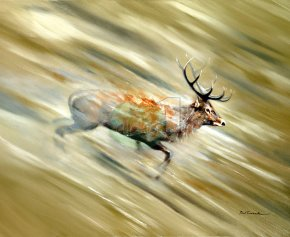 Running Free a limited edition print by Paul Tavernor